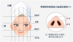鼻孔缩小手术大概多少钱?