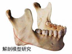 下颌骨整形手术的价格是多少