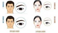 郑州种植眉毛手术的价钱是多少