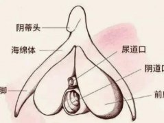 阴道闭锁会有致月经吗?阴道闭锁该怎么治疗呢?